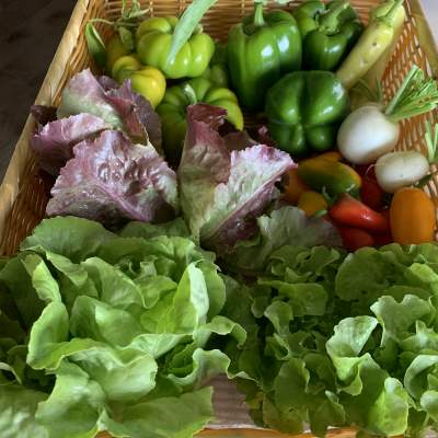 Order Eggs and Winter Produce